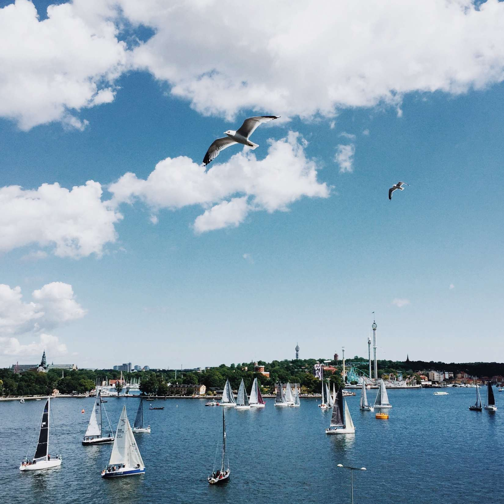 Boat race Stockholm: 5 TIPS FOR RELOCATING A NEW HIRE TO SWEDEN THIS SUMMER