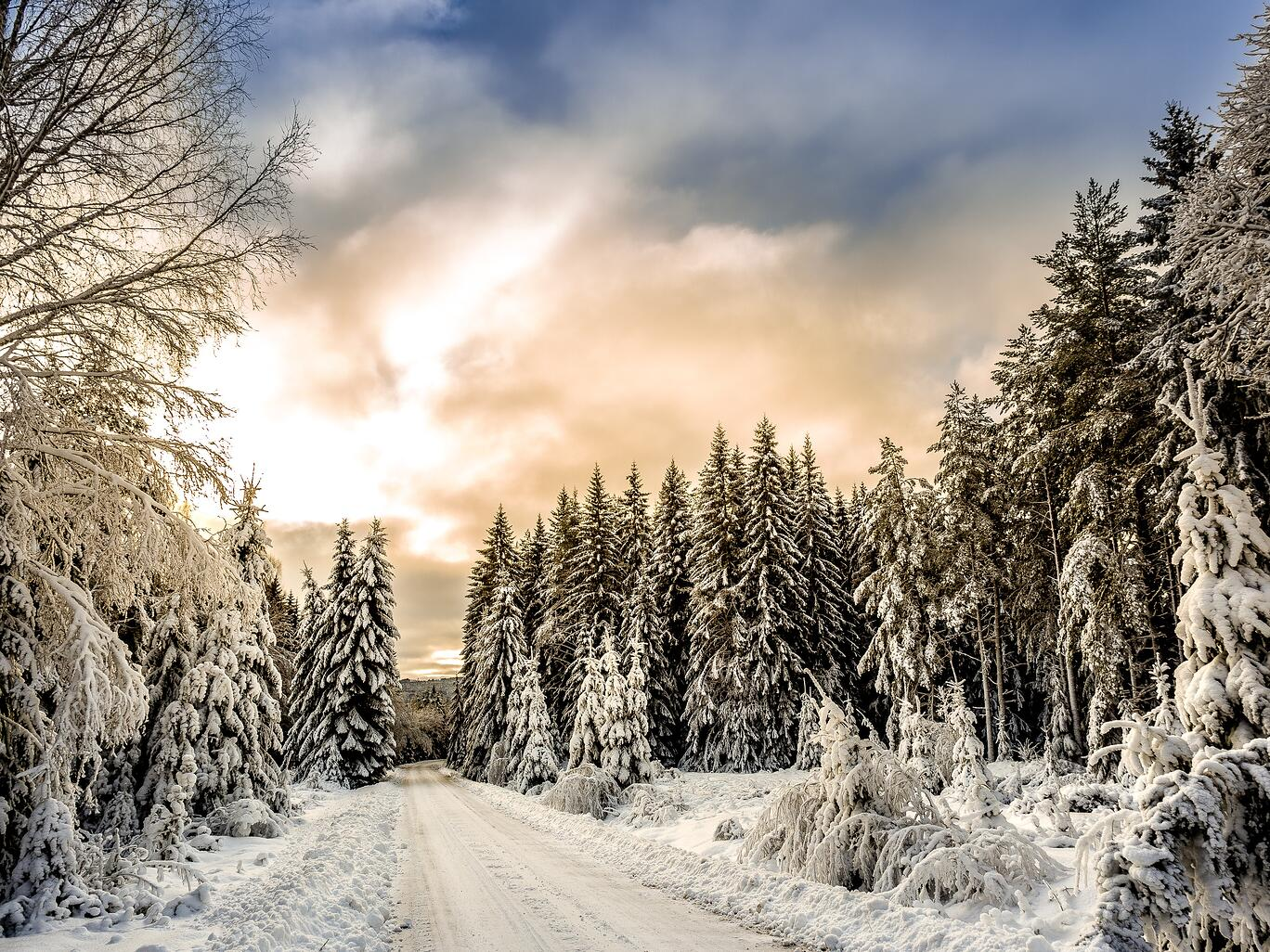 Snow-covered-road-sweden: The importance of getting lost as an expat in Sweden