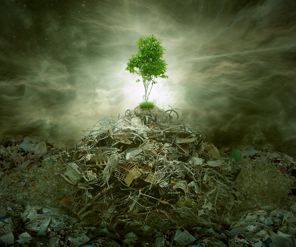 Green concept as a leaf tree on top of mountain heap of garbage with roots as an environment or conservation icon for waste management or new healthy beginning.NU ÄR VI PÅ NIMMERSIONS KLIMATSMARTA - NÄSTAN I ALLA FALL!