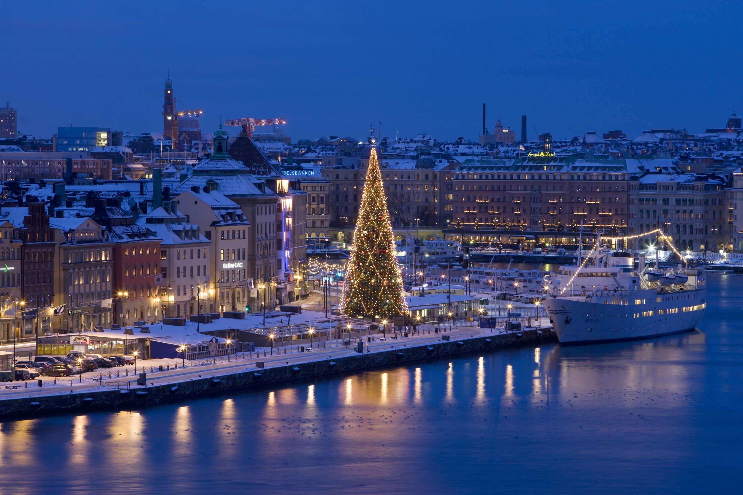 Stockholm_view_christmas_tree_Photo_Henrik_Trygg (1)