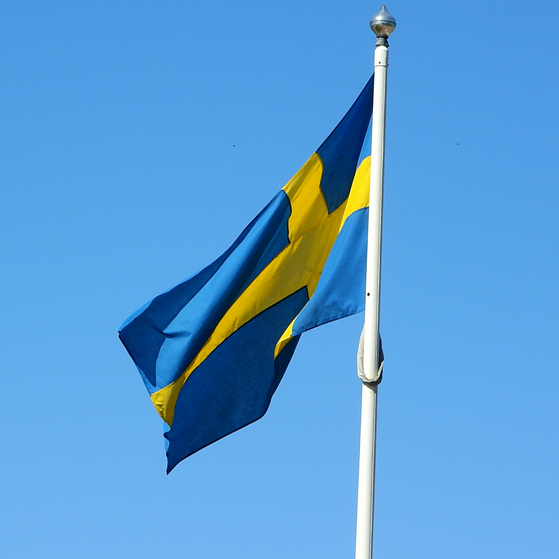 Swedish Flag: 5 tips for your expat's success in Sweden
