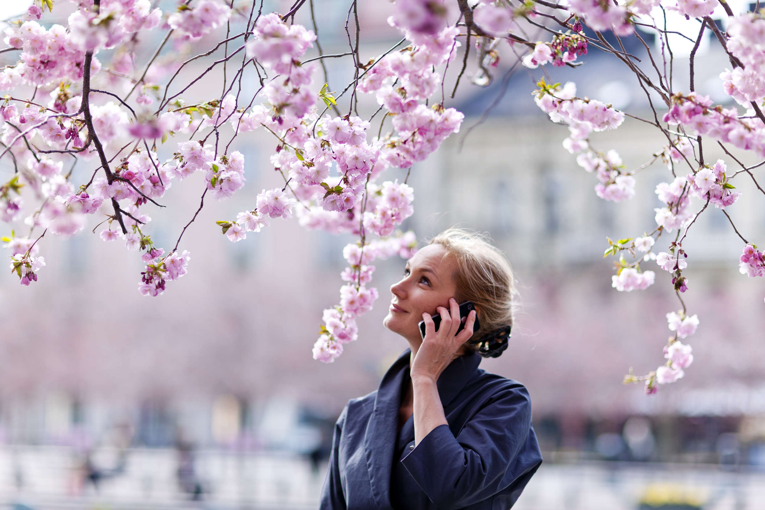 Woman_talking_in_mobile_under_Cherry_trees_Kungstradgarden_Photo_Henrik_Trygg